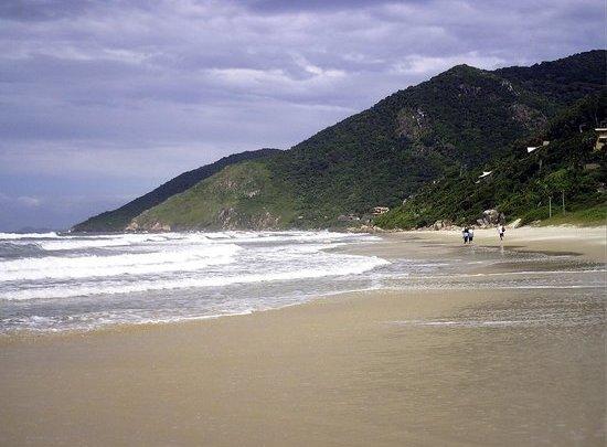 Turistas aproveitam chuvarada em Florianópolis para estocar água limpa