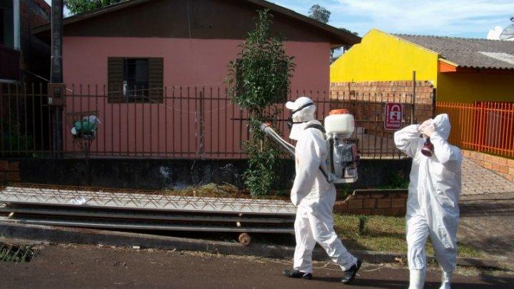 Dengue: Aplicação de veneno na Efapi nesta sexta-feira