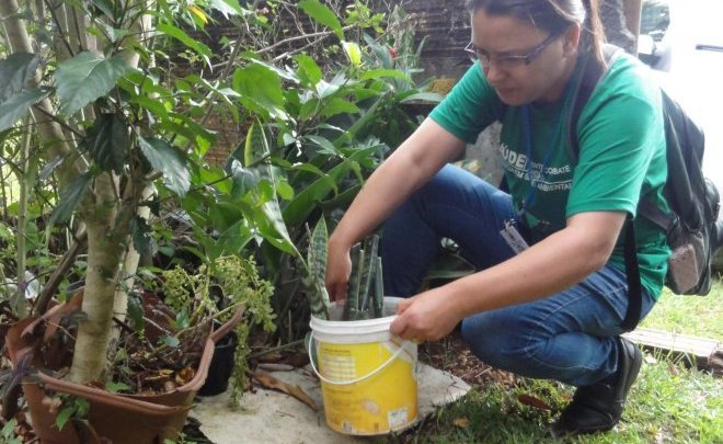 Chapecó vai receber apoio das Forças Armadas no combate ao Aedes aegypti