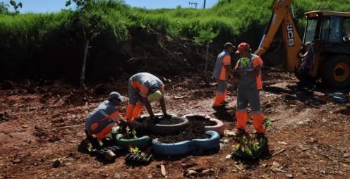 Prefeitura de Chapecó recupera área degradada