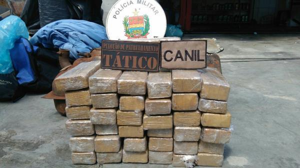 Mais de 30 quilos de maconha é apreendida pela Polícia em Chapecó