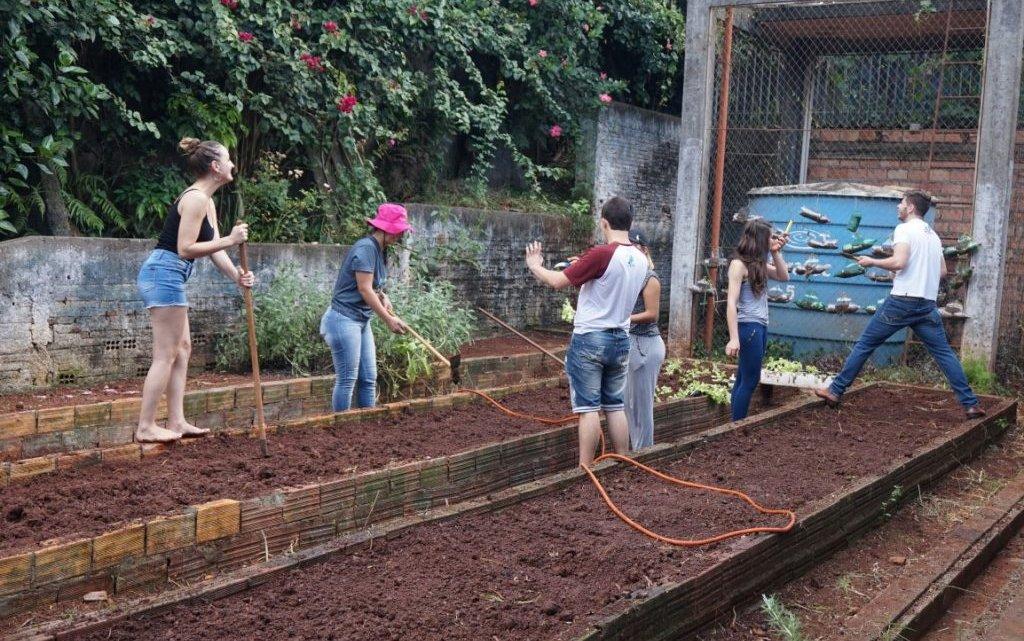 Saúde na Escola: Reativação de Horta Comunitária no São Pedro