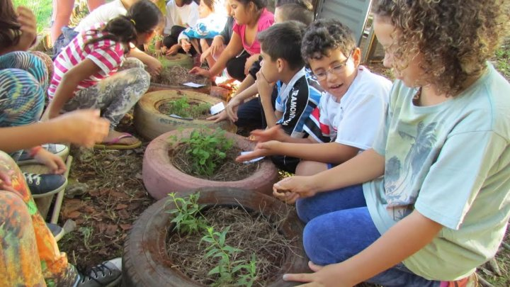 Cultura Popular: alunos constroem horta medicinal