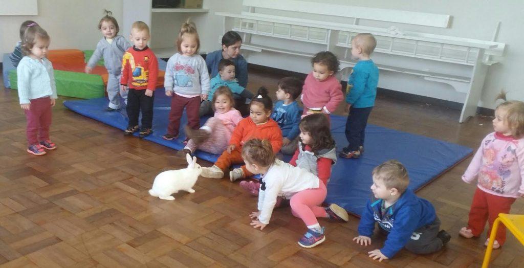 Projeto estreita os laços entre crianças e animais