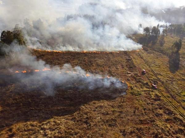 Chapecó registra 23 incêndios em vegetação nos últimos 13 dias