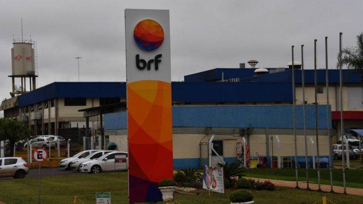 BRF de Chapecó anuncia que dará férias coletivas e suspenderá abate de frangos