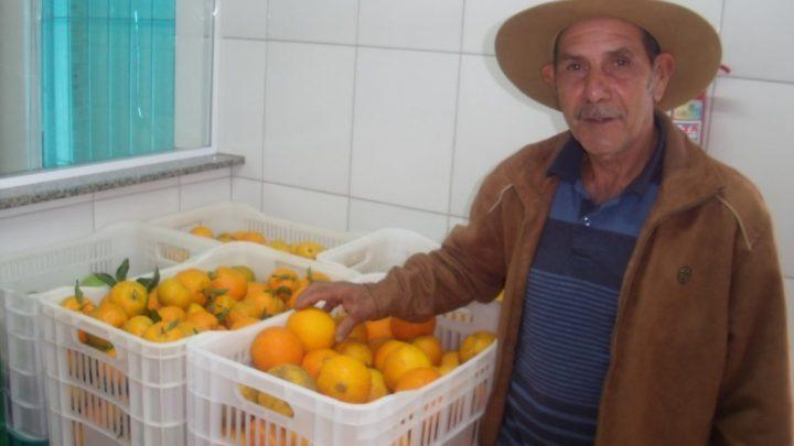 Programa Aquisição Alimentos – Produtos de qualidade e renda na agricultura de Chapecó