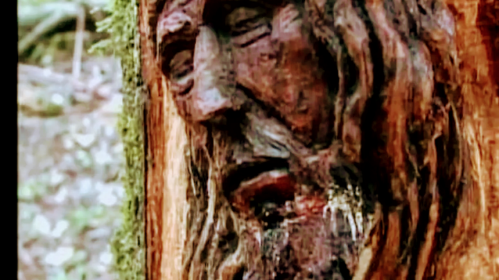 Artista esculpe rosto de Cristo em árvore de parque em Chapecó