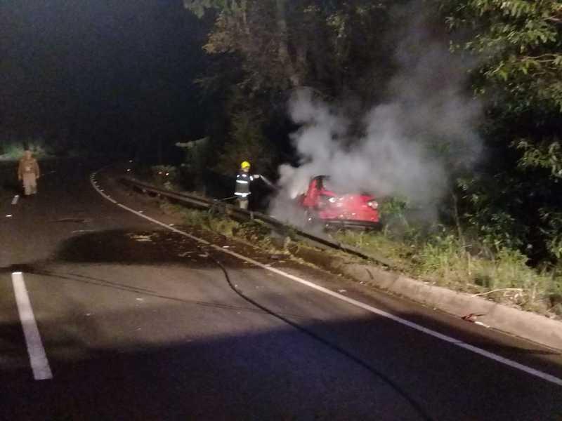 Veículo pega fogo após colidir em árvore em Novo Horizonte