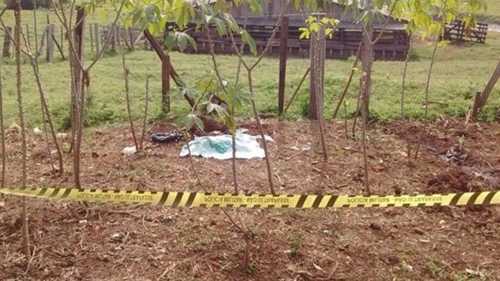 Mulher de 25 anos afirma ter dado à luz e enterrado criança na horta de casa