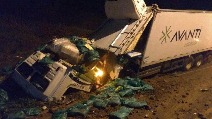 Caminhão fica destruído após sair da pista na SC-283 em Seara