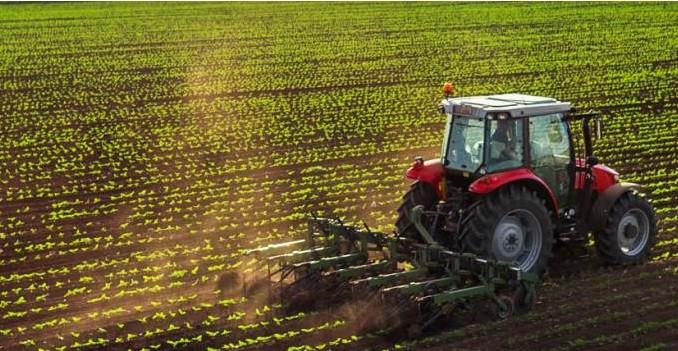 Plano Safra deve disponibilizar R$ 14,3 bi para investimentos no agronegócio de SC