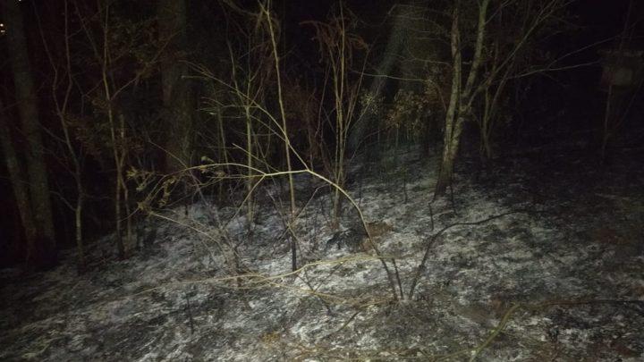 Homem morre por asfixia após incêndio em vegetação no Oeste de SC