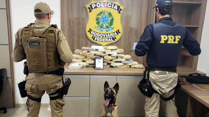 PRF apreende 21 kg de pasta-base de cocaína e cinco quilos de crack na BR 282 em Lages