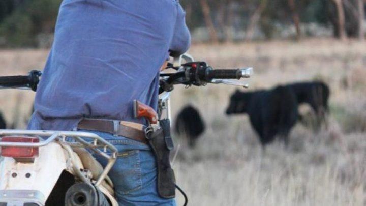 Bolsonaro sanciona lei de posse de arma em áreas rurais