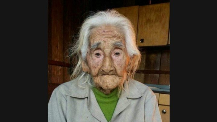 Idosa de 103 anos de idade busca reencontrar filho perdido em SC