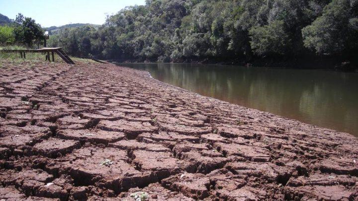 Em Santa Catarina 14 cidades estão em situação de emergência ou alerta por causa da estiagem