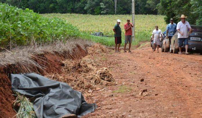 Agricultor morre após ser picado por enxame de abelhas no RS