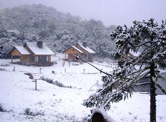 Ar Polar deve trazer frio e geada para Santa Catarina nos próximos dias