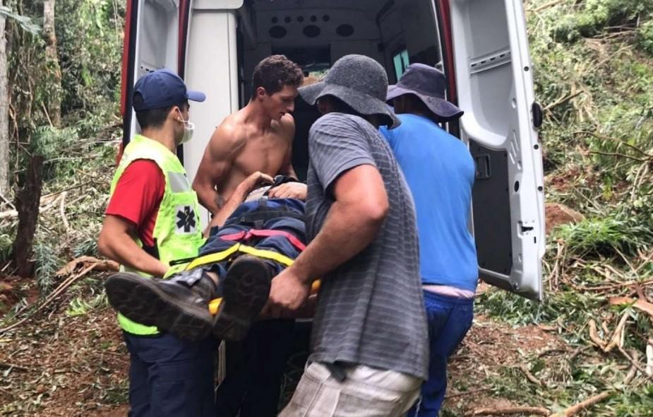 Homem acaba no hospital após ser atingido por eucalipto durante trabalho