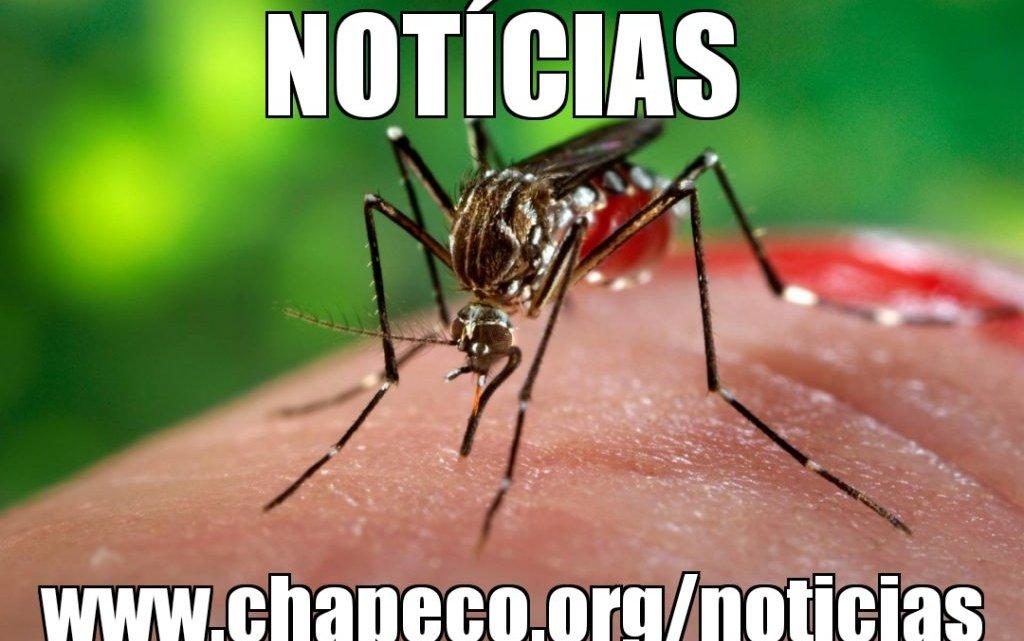 Chapecó contabiliza 14 casos confirmados de Dengue