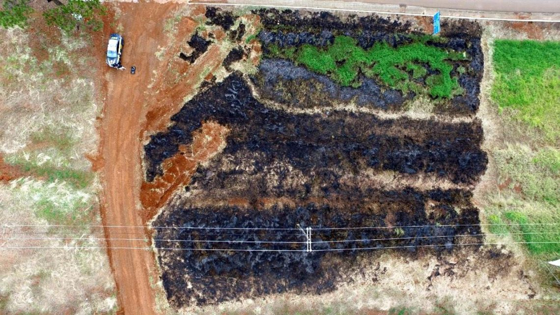 Pela terceira vez, idoso é flagrado fazendo queimadas às margens da BR-282 em Xanxerê