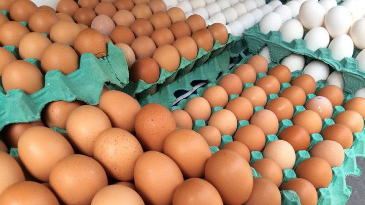 BRF elimina uso de ovos de galinhas criadas em gaiolas