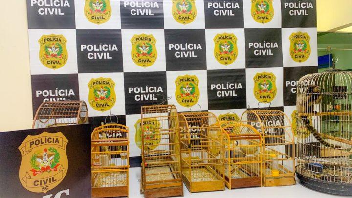 Polícia Civil apreende animais silvestres em SC