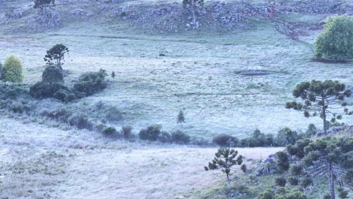 Geada muda o amanhecer deste domingo na Serra Catarinense