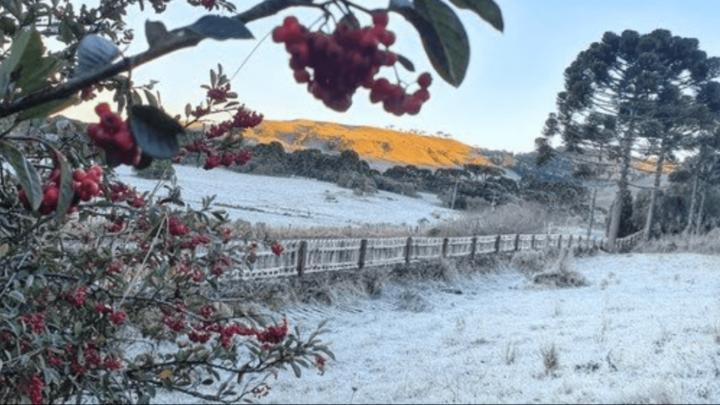 Inverno entrega cartão de visitas na primeira semana de frio do ano em SC