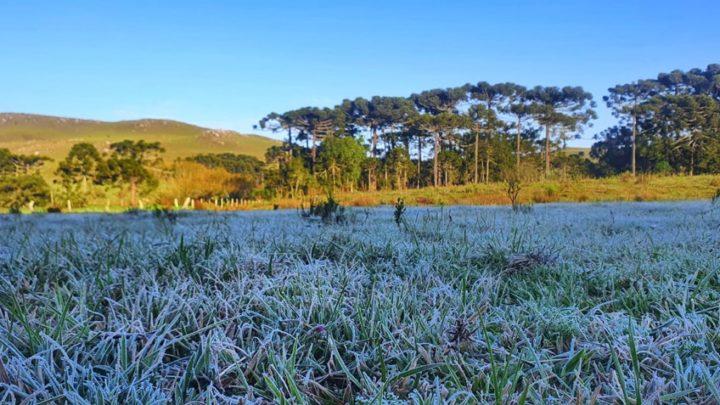 Frio intenso chega no início da próxima semana em Santa Catarina