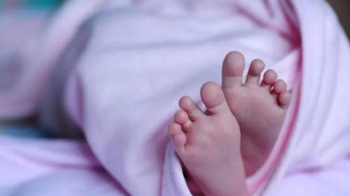 Casal de mulheres ganha direito de registrar bebê gerado com inseminação caseira em SC