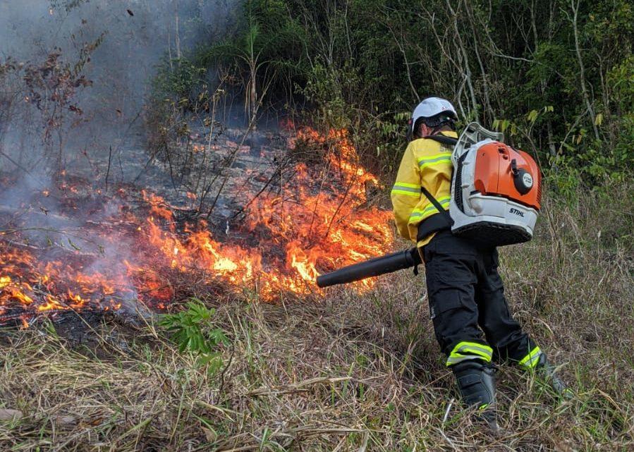 Incêndio destrói cerca de 6 hectares de floresta em Jardinópolis