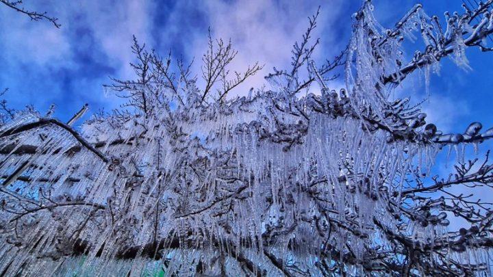 Cidades de SC amanhecem abaixo de -7 °C com a chegada do frio intenso