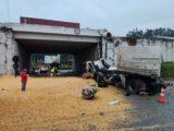 Carreta carregada de milho cai de viaduto na BR-101, veja o momento