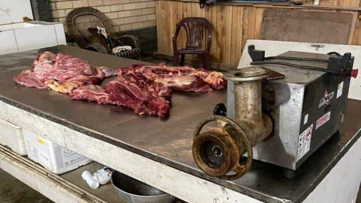 Quatro restaurantes são investigados por venda de carne de cavalo em SC